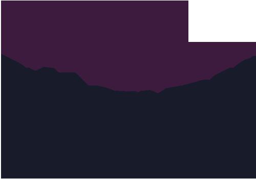 Blakc Iris Images Logo